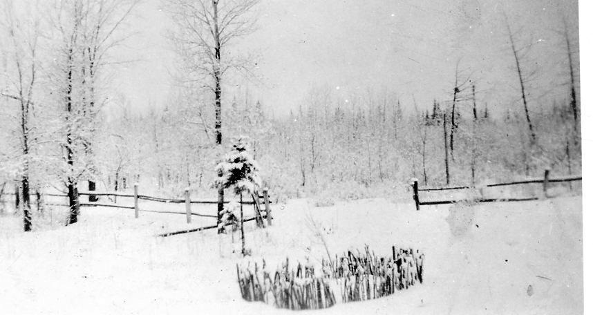 Snowy Minnesota.
