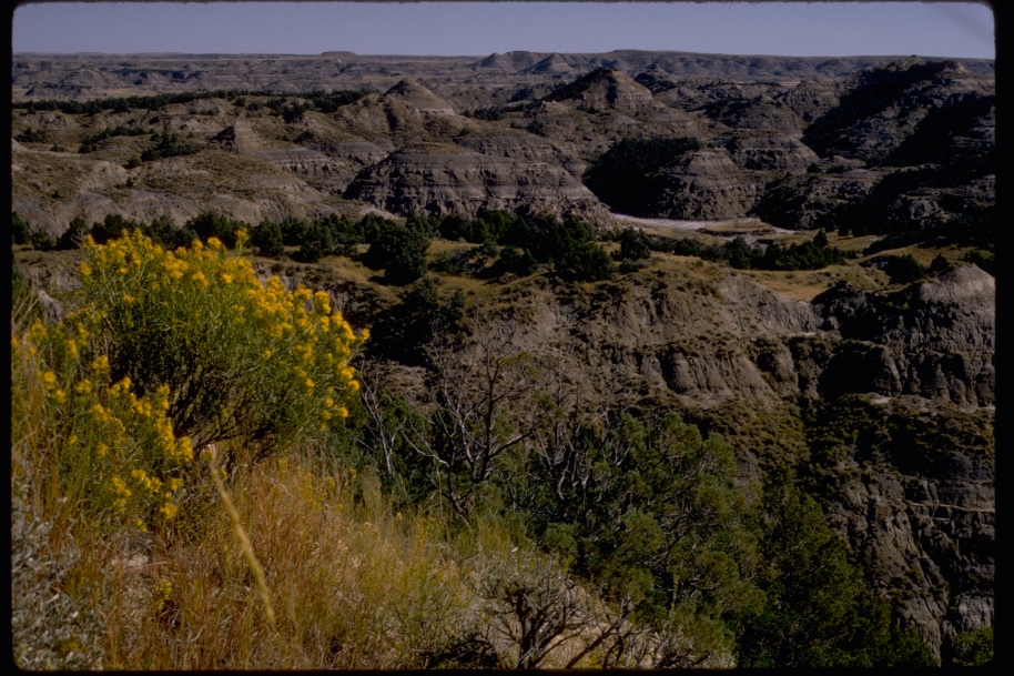 photo from National Park Serive of Teddy Roosevelt National Park.