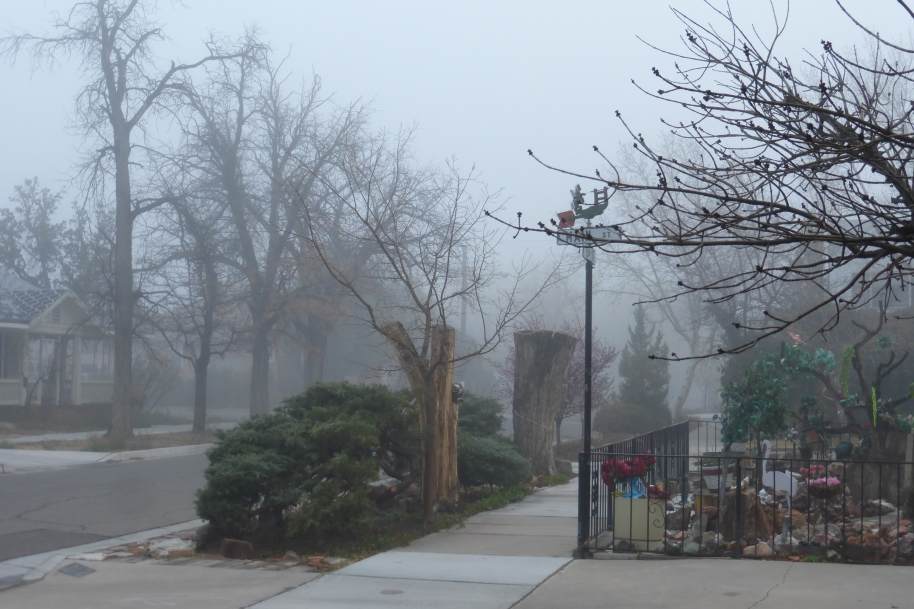 I just like this photo. The 'hood in a rare morning fog.