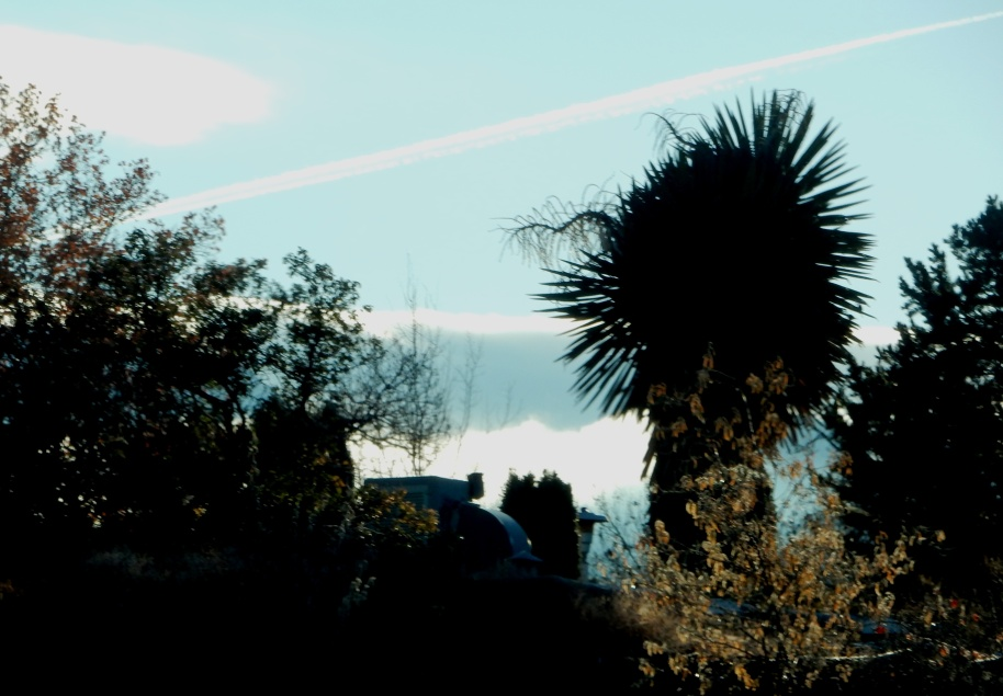 Clouds and morning fog and contrails (condensation trails from planes) over the mountains.