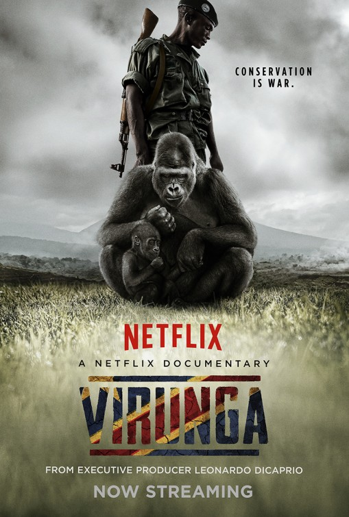 YOU MUST MUST MUST SEE THIS. JOIN NETFLIX. This is the official Netflix poster I think. Hope they don't sue me.