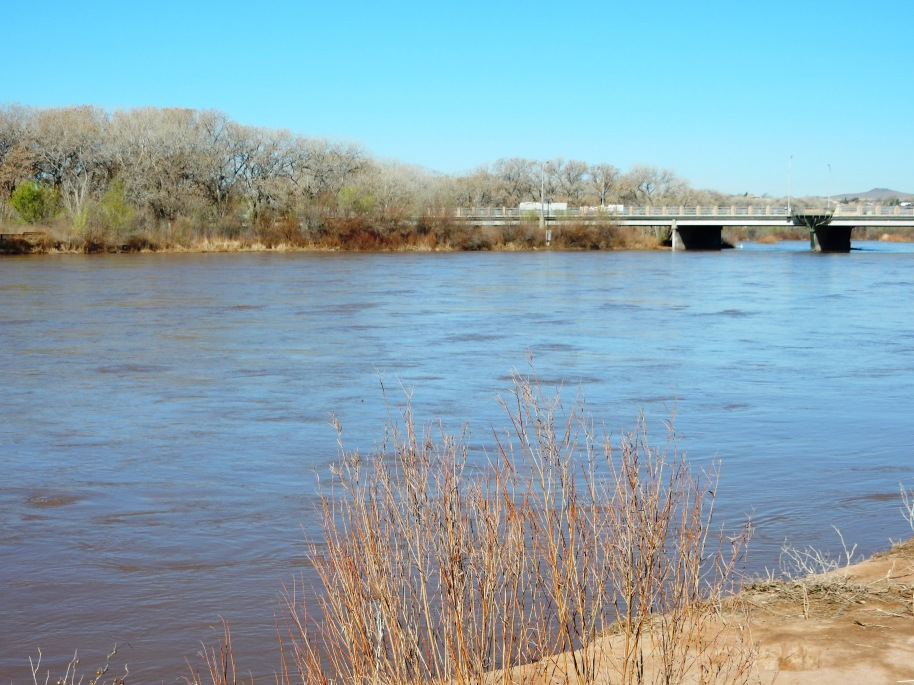 The Rio Grande has water today.