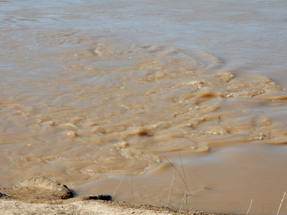 The muddy moving Rio Grande.